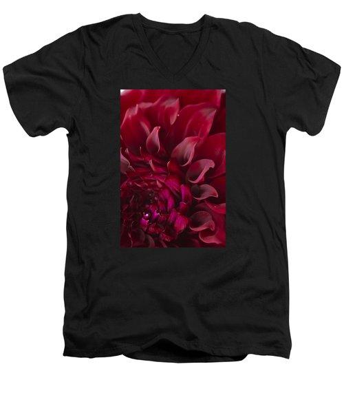 Scarlet Spiral Men's V-Neck T-Shirt