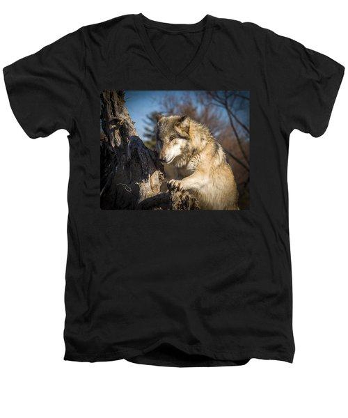 Scout Men's V-Neck T-Shirt