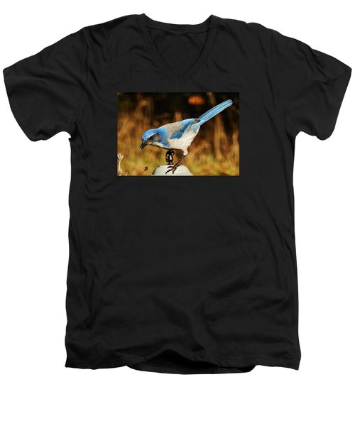 Men's V-Neck T-Shirt featuring the photograph Scrub Jay by VLee Watson