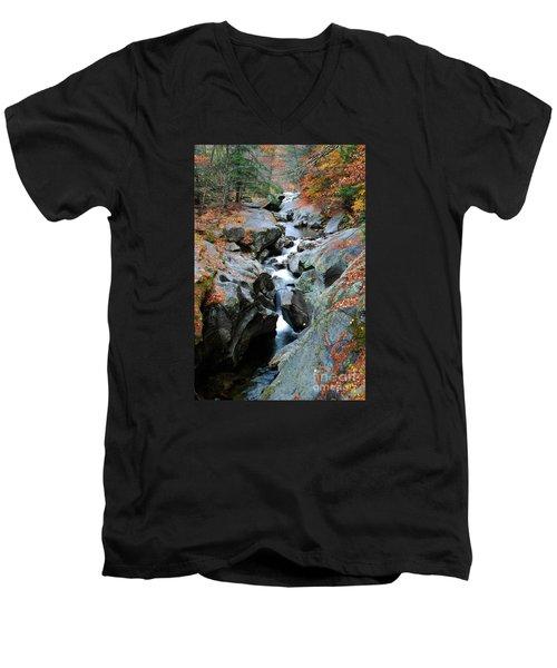 Sculptured Rocks Men's V-Neck T-Shirt