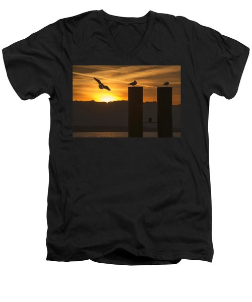 Men's V-Neck T-Shirt featuring the photograph Seagull In The Sunset by Chevy Fleet