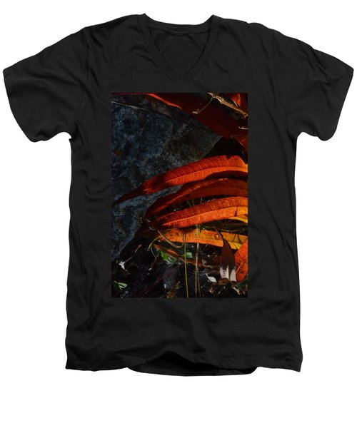 Seasonal Color Theory Men's V-Neck T-Shirt