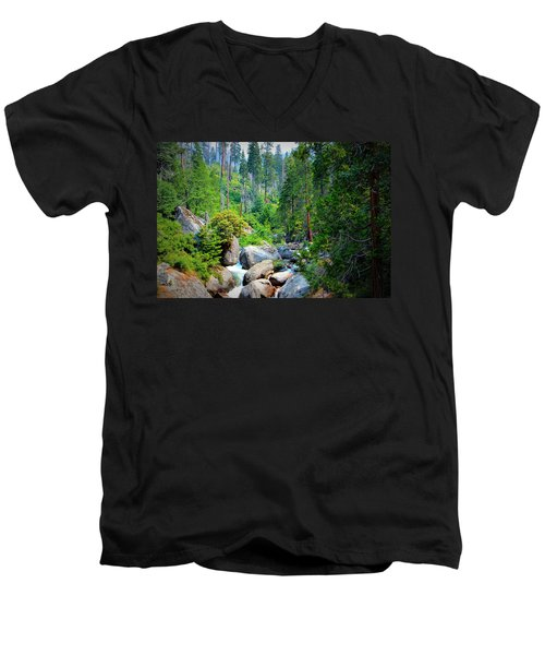 Sequoia Stream Men's V-Neck T-Shirt