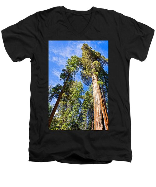 Sequoias Reaching To The Clouds In Mariposa Grove In Yosemite National Park-california Men's V-Neck T-Shirt