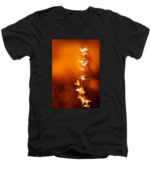 Serene Men's V-Neck T-Shirt by Darryl Dalton
