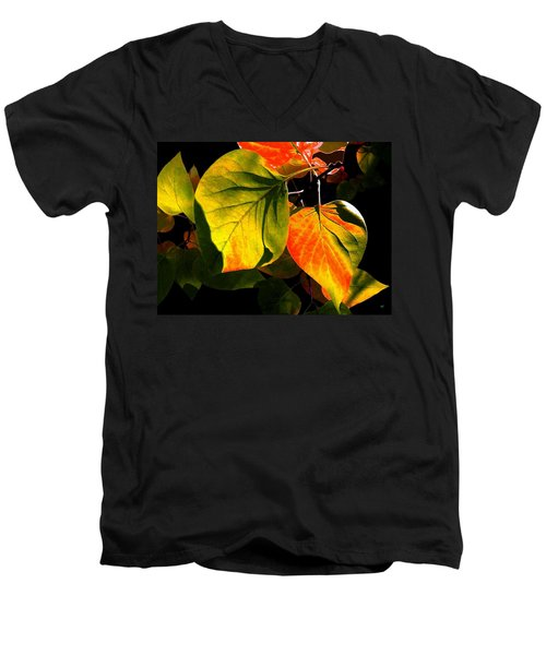 Shades And Shadows Men's V-Neck T-Shirt