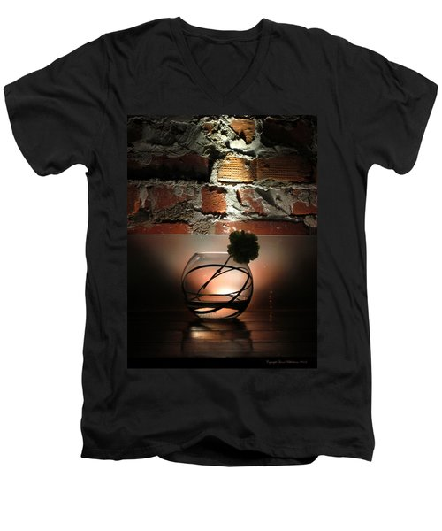 Shadow Flower Men's V-Neck T-Shirt