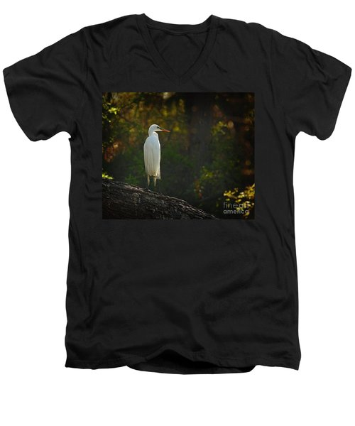Shadow Heron Men's V-Neck T-Shirt