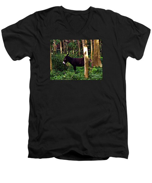 Shhh I'm Hiding Men's V-Neck T-Shirt by Patricia Griffin Brett