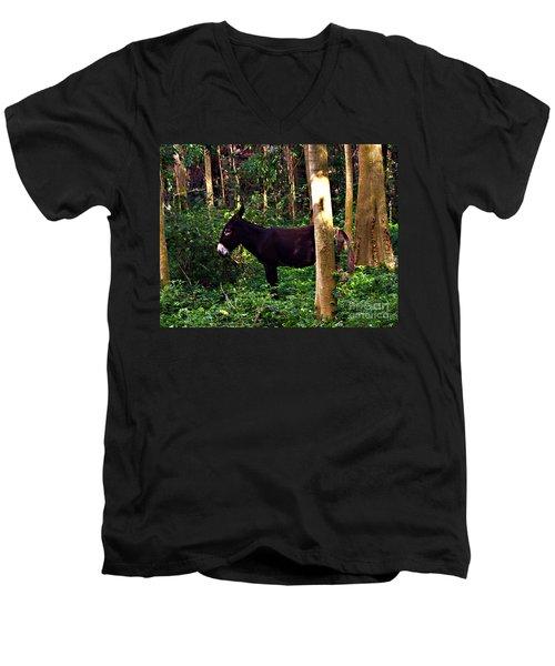 Shhh I'm Hiding Men's V-Neck T-Shirt