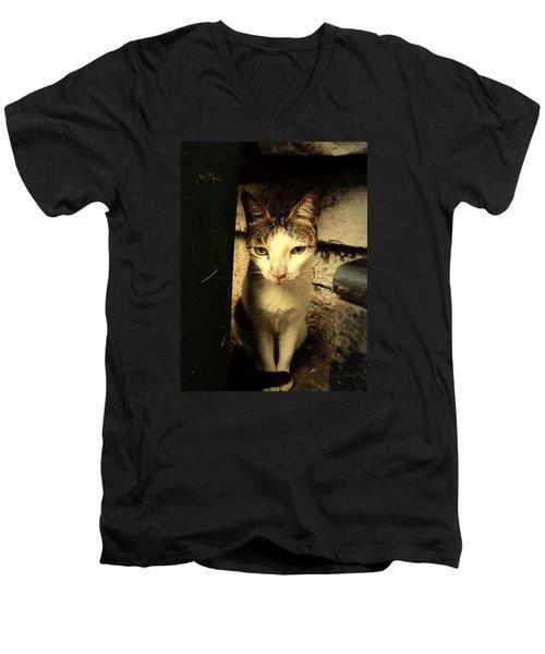Shy Cat Men's V-Neck T-Shirt by Salman Ravish