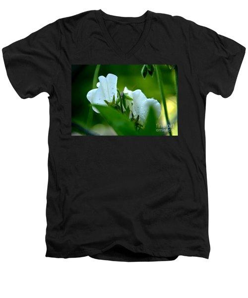 Shyness Men's V-Neck T-Shirt
