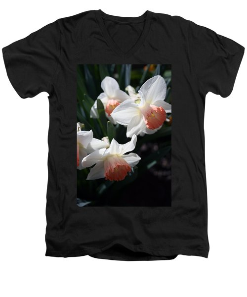 Men's V-Neck T-Shirt featuring the photograph Signs Of Spring by Kay Novy
