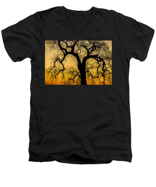 Silhouette Oak Men's V-Neck T-Shirt