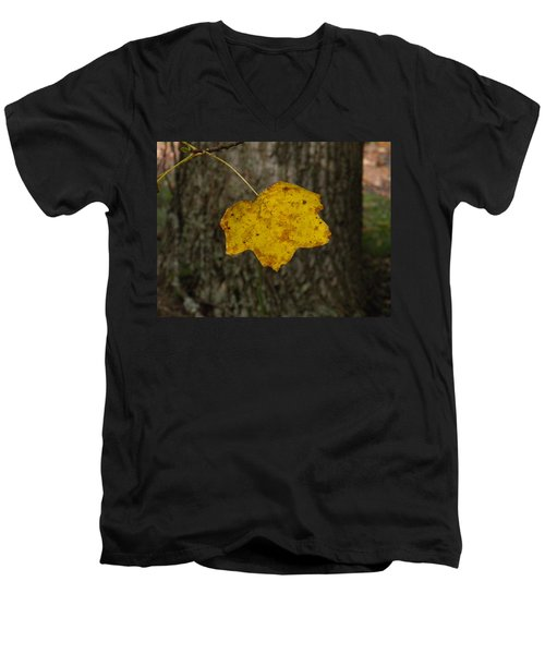 Men's V-Neck T-Shirt featuring the photograph Single Poplar Leaf by Nick Kirby