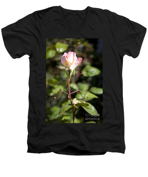 Single Rose Men's V-Neck T-Shirt by David Millenheft