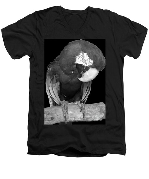Sleepy Bird  There Is A Nap For That B And W Men's V-Neck T-Shirt by Barbie Corbett-Newmin