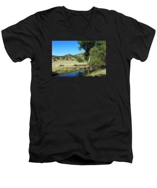 Sleepy Summer Afternoon Men's V-Neck T-Shirt by Elizabeth Sullivan