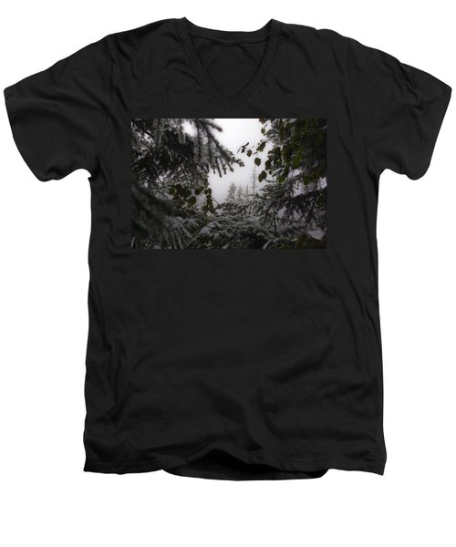 Snow In Trees At Narada Falls Men's V-Neck T-Shirt