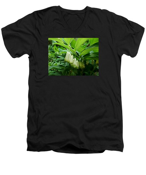 Wild Solomon's Seal Men's V-Neck T-Shirt by William Tanneberger