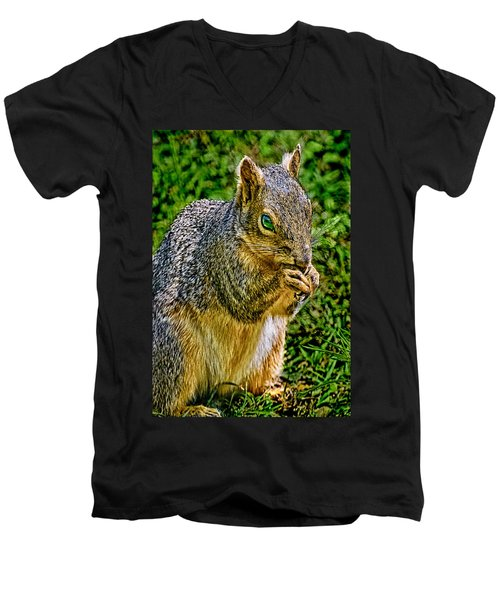 Some Squirrels Are Big Men's V-Neck T-Shirt
