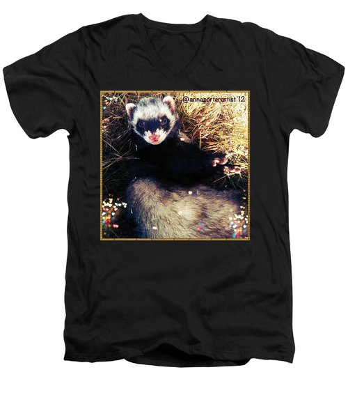 Sometimes We Like To Roll In The Straw #ferrets #pets Men's V-Neck T-Shirt