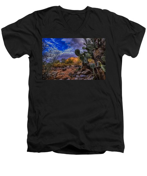 Men's V-Neck T-Shirt featuring the photograph Sonoran Desert 54 by Mark Myhaver