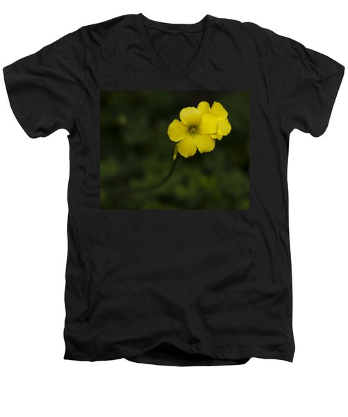 Sour Grass Men's V-Neck T-Shirt