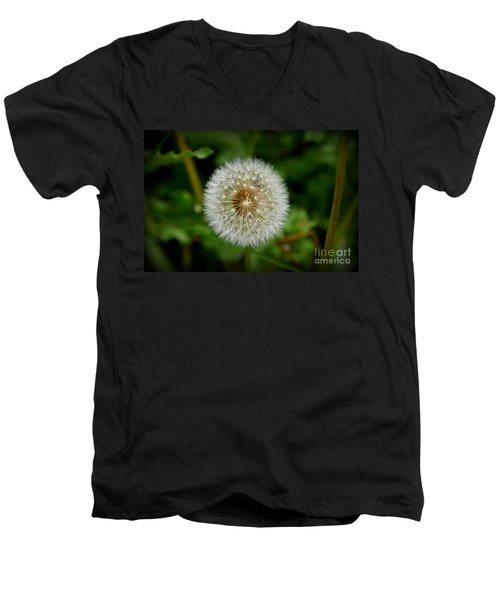 Sparkling Dandelion Men's V-Neck T-Shirt by Debra Martz