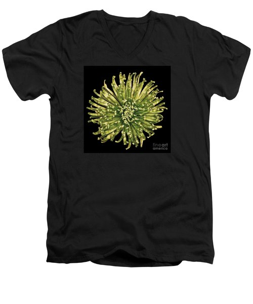 Men's V-Neck T-Shirt featuring the photograph Spider Mum by Jerry Fornarotto