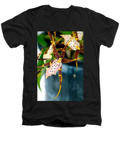 Spider Orchid Men's V-Neck T-Shirt by Lehua Pekelo-Stearns