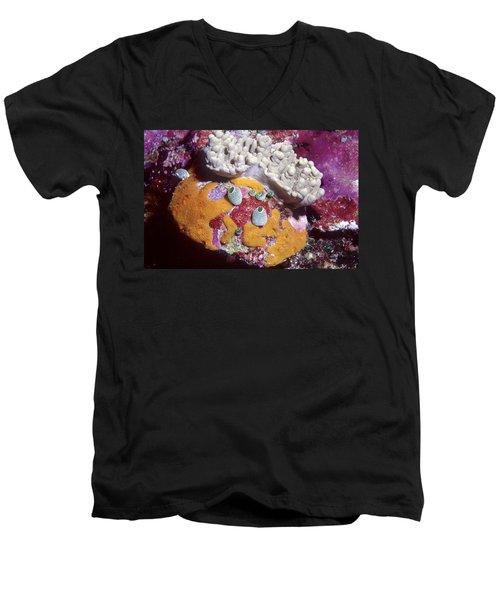 Sponge Head Men's V-Neck T-Shirt