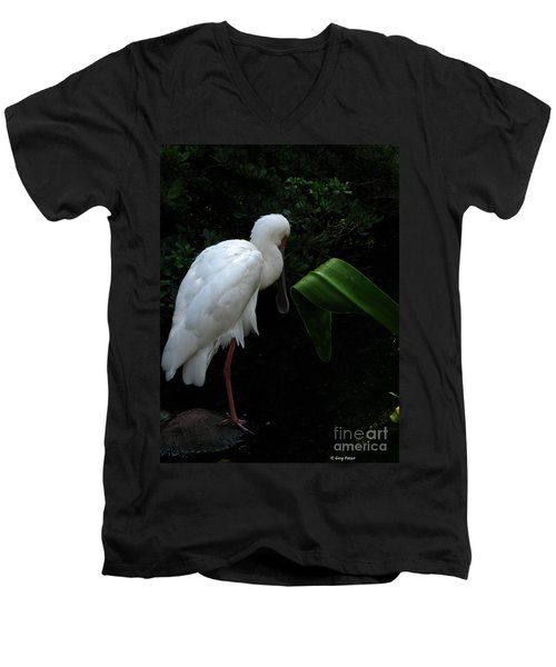 Spoonbill Morning Men's V-Neck T-Shirt