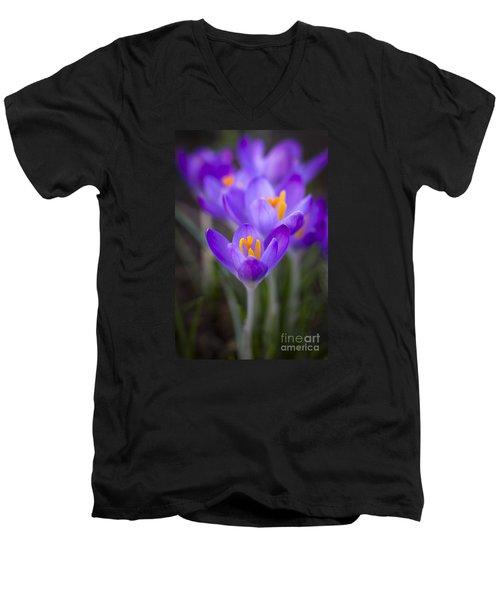 Spring Has Sprung Men's V-Neck T-Shirt