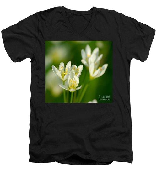 Spring In Miniature Men's V-Neck T-Shirt by Liz Masoner