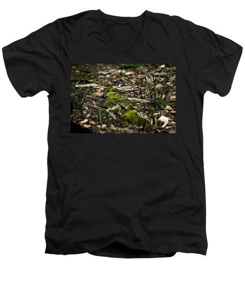 Spring Moss Men's V-Neck T-Shirt