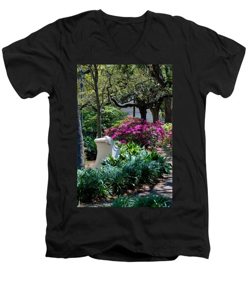 Spring Solitude Men's V-Neck T-Shirt