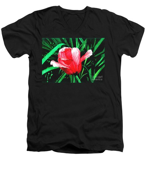Spring Solo Men's V-Neck T-Shirt by Barbara Jewell