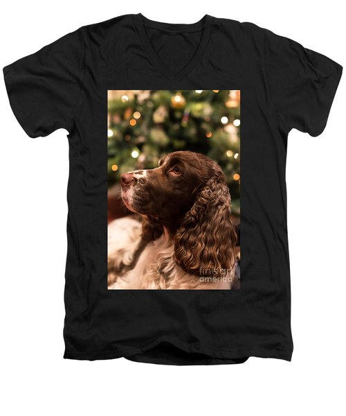 Springer Spaniel Men's V-Neck T-Shirt