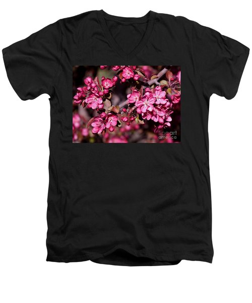 Men's V-Neck T-Shirt featuring the photograph Spring's Arrival by Roselynne Broussard