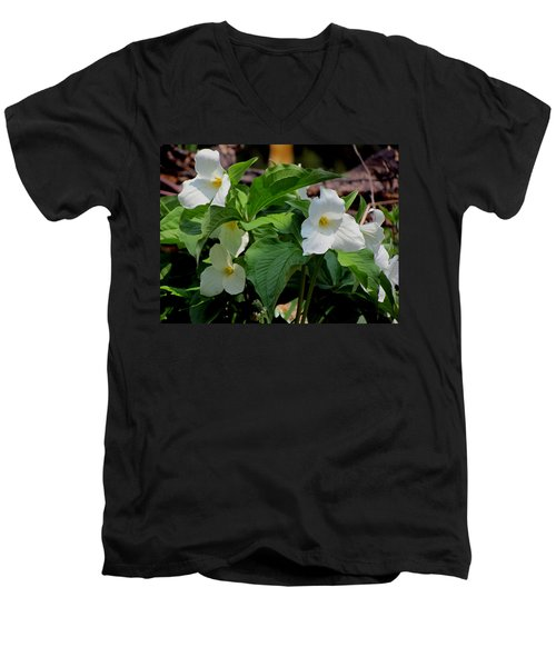 Springtime Trillium Men's V-Neck T-Shirt