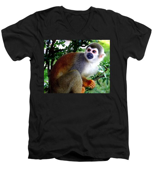 Men's V-Neck T-Shirt featuring the photograph Squirrel Monkey by Laurel Talabere