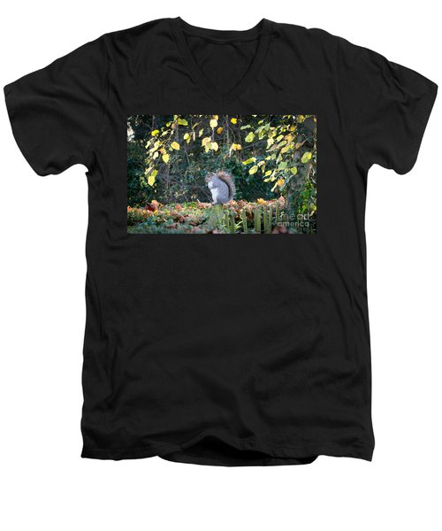 Squirrel Perched Men's V-Neck T-Shirt