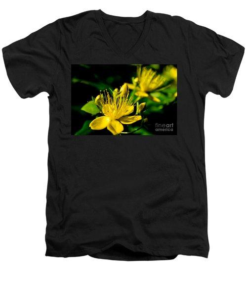 St John's Wort Men's V-Neck T-Shirt