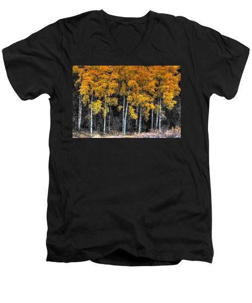 Stand  Men's V-Neck T-Shirt