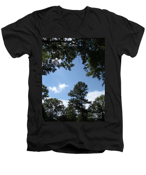 Stately Forest  Men's V-Neck T-Shirt