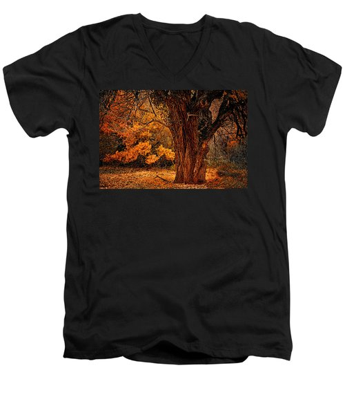 Men's V-Neck T-Shirt featuring the photograph Stately Oak by Priscilla Burgers