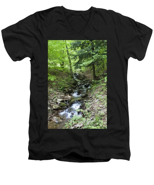 Stepped Water Fall Men's V-Neck T-Shirt