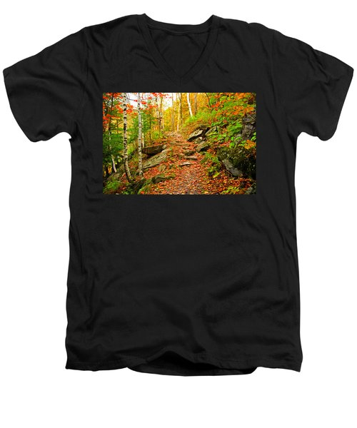 Men's V-Neck T-Shirt featuring the photograph Stepping Stones by Bill Howard