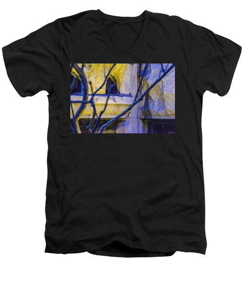 Stone Abstract One Men's V-Neck T-Shirt